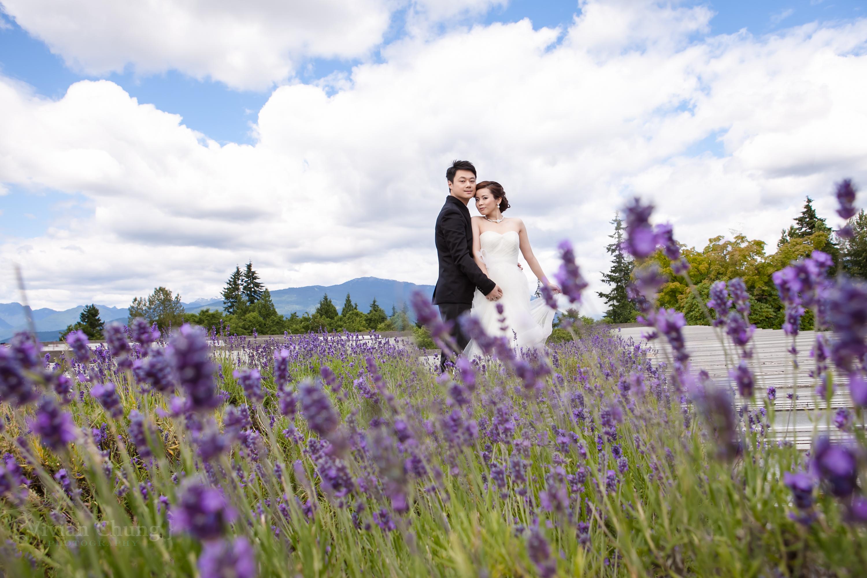 pre-wedding vancouver